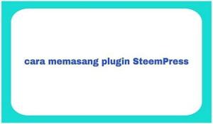 cara-memasang-plugin-SteemPress