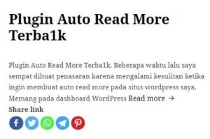 Plugin Auto Read More Terba1k 1